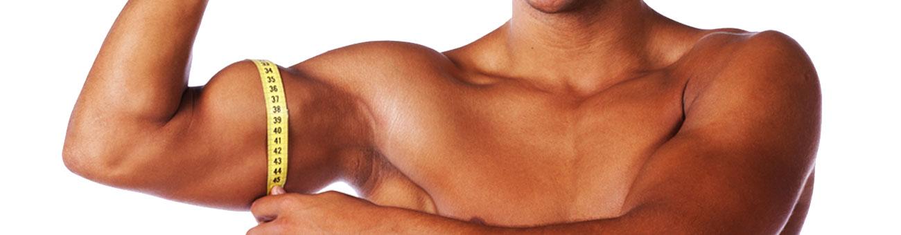 Testing-Slider-Muskel